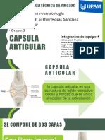 CAPSULA ARTICULAR REUMATOLOGÍA.pdf