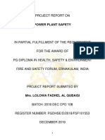 Power Plant Safety