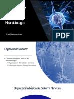 2. Neurobiología.pdf