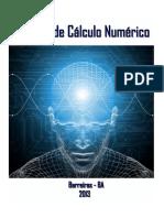 Apostila de Cálculo Numérico Pronta.pdf