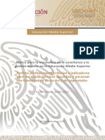Perfiles criterios indicadores, EMS 2020-2021.docx