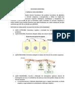 fisiologia-endc3b3crina.pdf