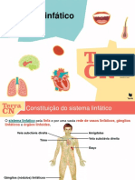 Sistema_linfático