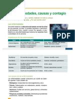 utilidades_gatovolador_net_issuu_down_php_url_https_3A_2F_2F.docx