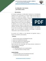 CAUSA Y EFECTO Y DETERMINACION DEL PROYECTO CIVIL 2