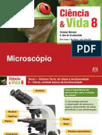 Microscópico