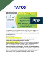 Breve descripc de fabricación del XANTATO.pdf