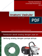 Vaskuler 2013.ppt