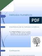importancia de los metodos numericos