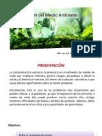 Gestión del Medio Ambiente 11a