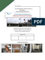 Grupo n°3-Práctica n°11-Pandeo en Columnas