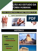 01 Introdução Anatomia Humana