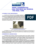 CINOMOSE DIAGNOSTICO LABORATORIAL POR MEIO DA TECNICA PCR REAL TIME