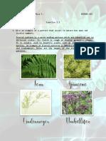 Exercise 2.1.pdf