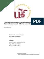 TESIS Tommaso Cogato.pdf