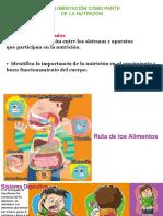 LA ALIMENTACION COMO PARTE DE LA NUTRICIÓN.pptx