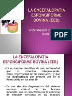 laencefalopataespongiformebovinaeeb-130129003954-phpapp02.pdf