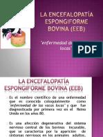 laencefalopataespongiformebovinaeeb-130129003954-phpapp02-convertido