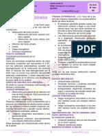 4R-AP-09-19-Patologia de vias urinarias  (1).pdf