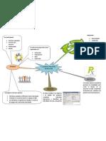 Gestión de Proyectos de Software mapa mental