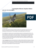 Research work on peregrine falcons inspires future aircraft technologies.pdf