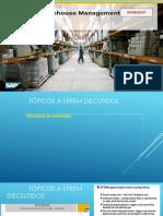 275481210-3-processos-suplementares-EWM.pptx