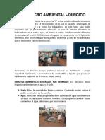 SIMULACRO AMBIENTAL DIRIGIDO