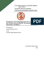 incedencia de enfermedades en el distrito de san jeronimo (1).docx