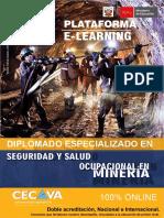 Seguridad _ Minería