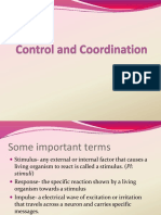 control_and_coordinationconverted (1).ppt