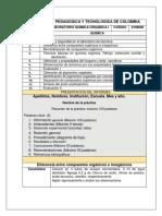 GUIAS Q.O.I 2-2018.docx