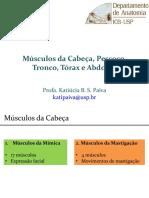 Slides Músculos Cabeça Pescoço e Tronco Kati2019