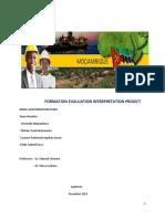 Project Formation Evaluation 2019 Christella.pdf