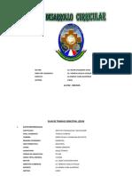 7. Formato para Plan Curricular - copia (3) - copia.docx