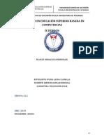 FORMATO PLAN DE UNIDAD DE APRENDIZAJE -  IX Versión WILMA CAUNALLA.doc