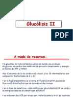05. Glucólisis II
