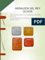 HERALDOS DEL REY OLIVOS