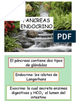 4.5.- Páncreas endocrino