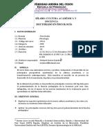 Sílabo Cultura académica y docencia.docx