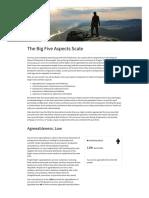 Big Five Aspects Scale