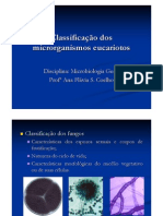 Aula_6._Classificacao_eucariotos