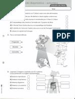 Ficha de avaliação Estudo do Meio