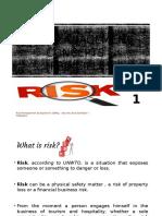 (1) Risk Management Concepts & Principles .pptx