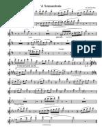 'A Sonnambula Flauto e sax alto