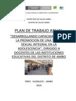 PLAN DE TRABAJO INSTITUCIONES EDUCATI PARA UGEL 2019