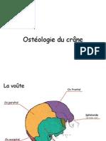 Osteologie_crane
