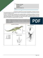 6-Biologia e geologia _Ficha de trabalho 021920