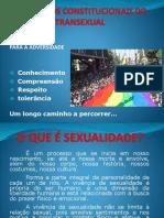 Os Direitos Constitucionais do Transexual.pptx