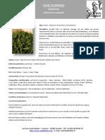Fiche_tech_Salicorne.pdf