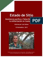 Solano-InformeEstadodeSitio2015